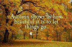 October Wellbeing Theme